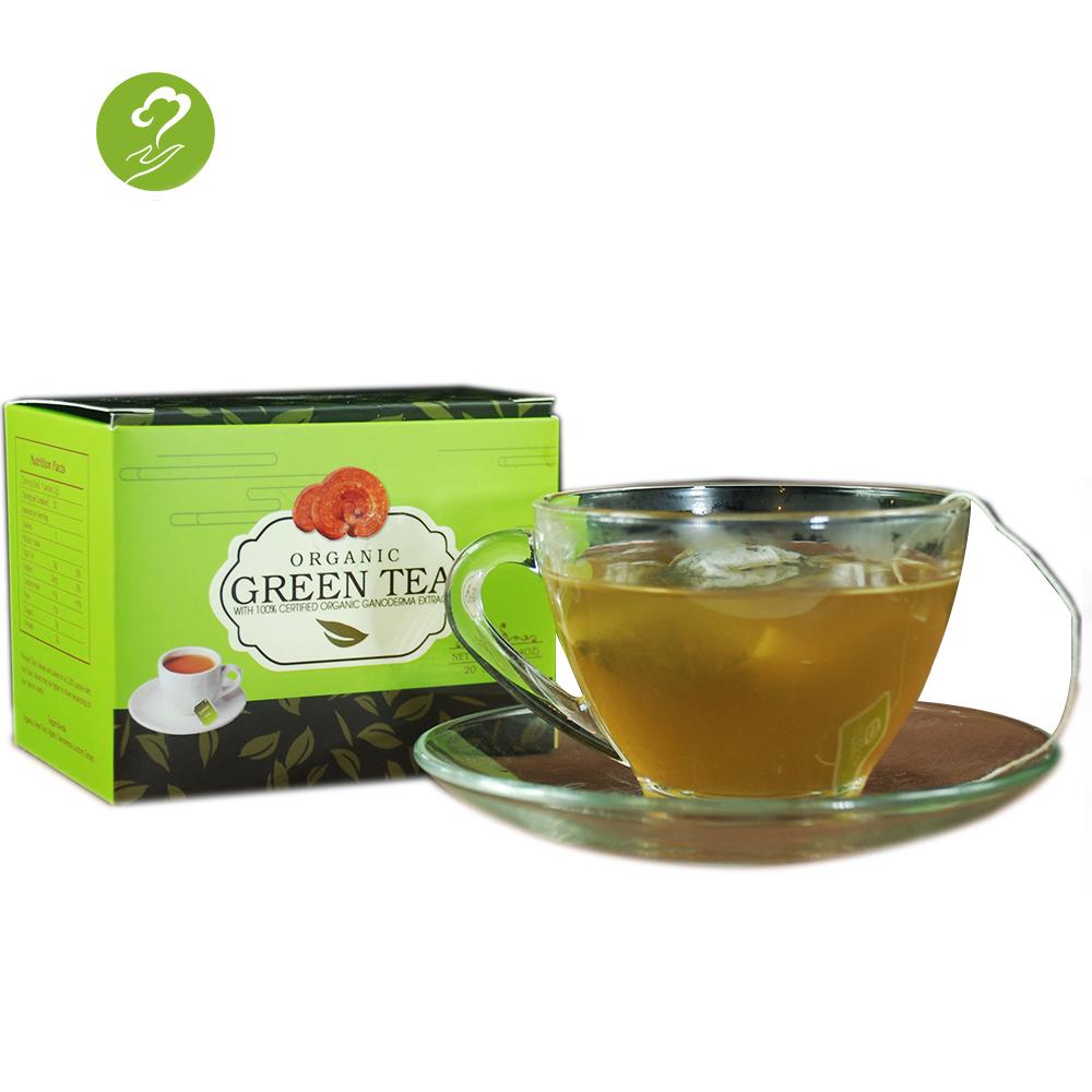 Private Label China Reishi Ganoderma Herbal Extract Healthy Organic Green Tea - 4uTea | 4uTea.com