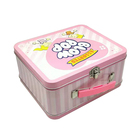 Rectangular tin with plastic handle children's metal lunch box for kids