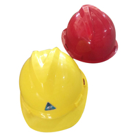 High quality low price abs safety helmet with CE certification