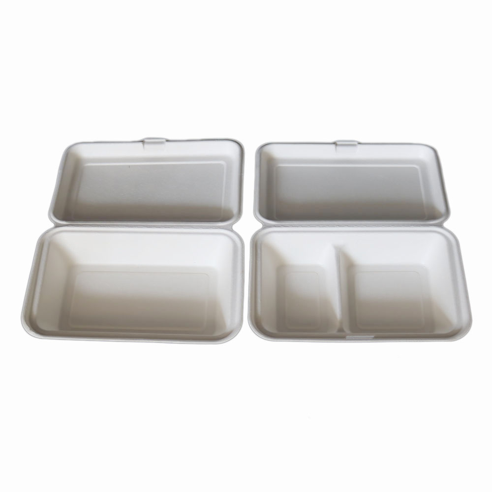 disposable sugarcane lunch food boxes takeaway packaging