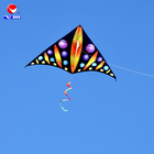 Custom Made Kites Coloring Delta Kite from Weifang Feiyue Factory