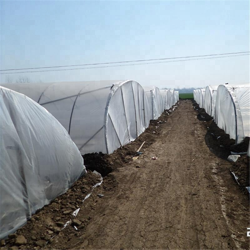 PO green house film poly sheeting green grow house made in China