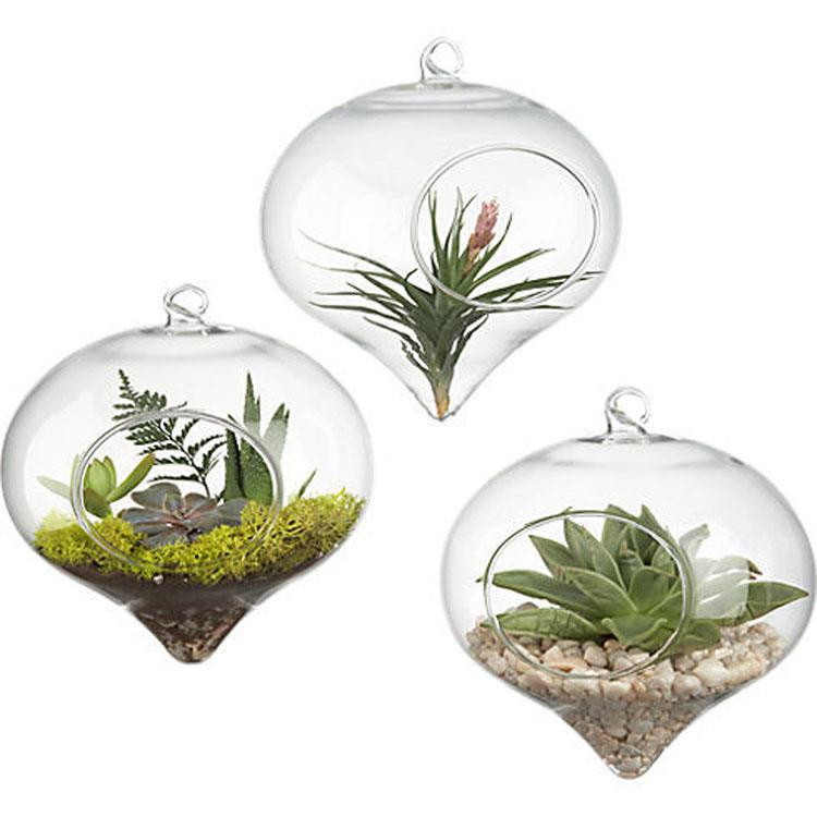 Pastoral style micro landscape bottle transparent succulent glass vase