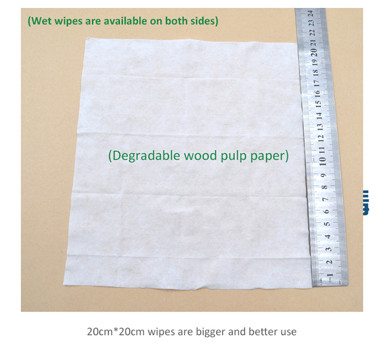Biodegradable Single Packed Disinfecting Closestool Wet Flushable Cleaning Towel