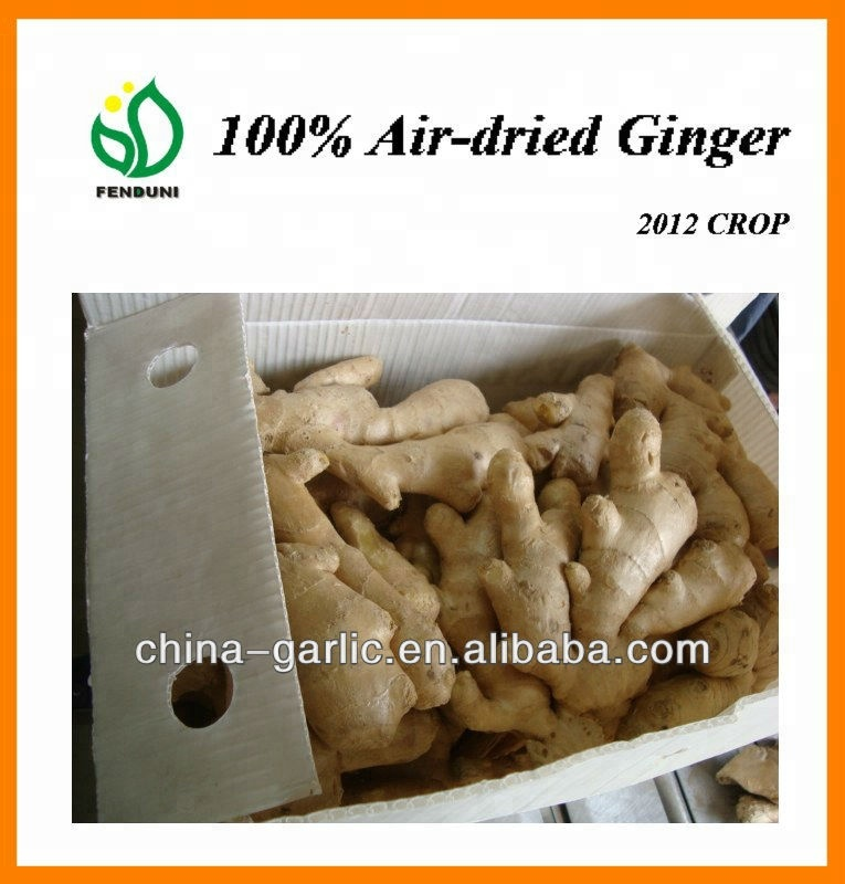 New Arrival!!! - Fresh Air Dried Ginger, supply in 40'' reefer container ginger