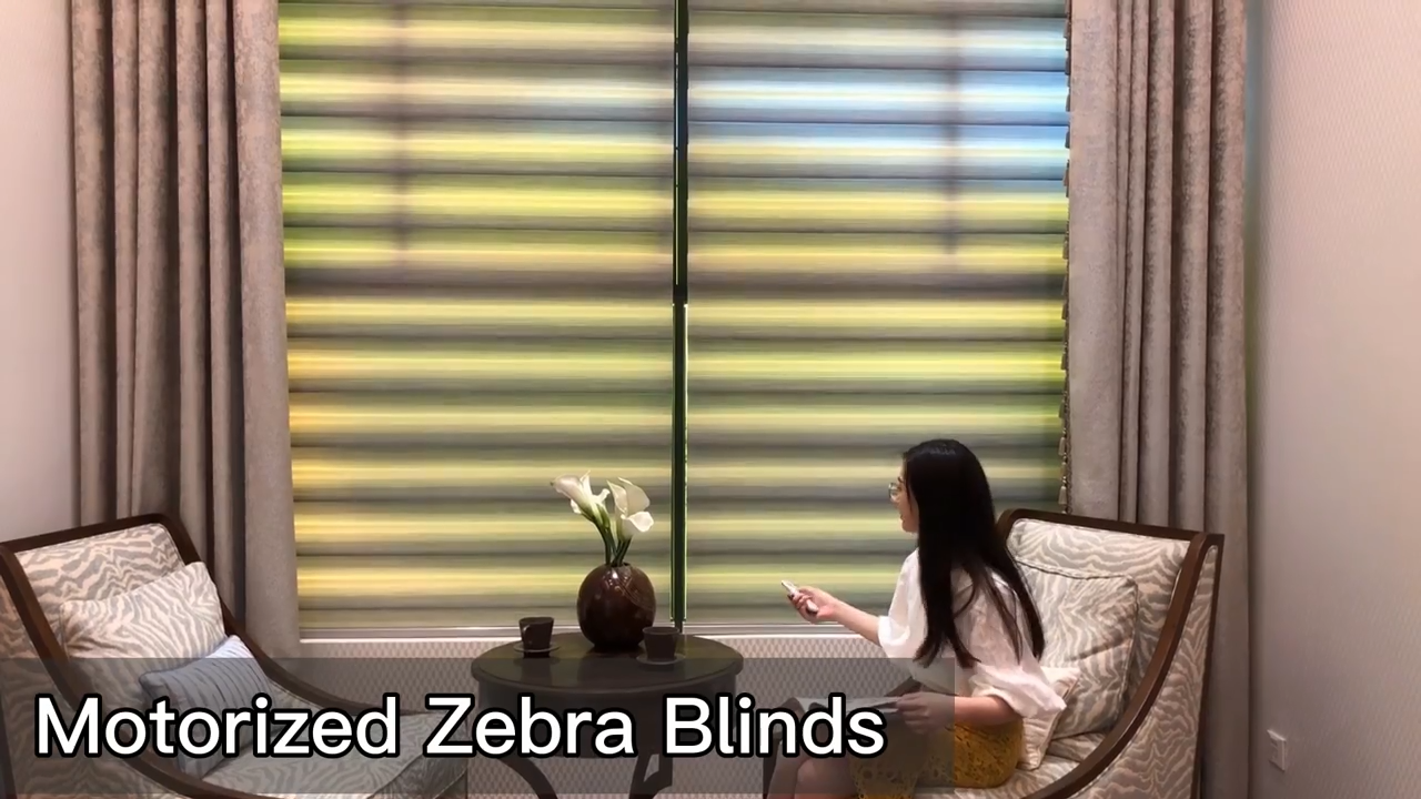 Double layers luxury germany smart blinds 100% blackout day night motorized zebra blinds