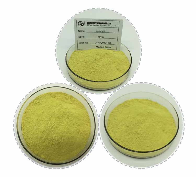 Bulk Price Pharmaceutical Grade Natural Sophora Japonica Extract 98% Quercetin