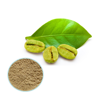 AoBei Natural pure Green coffee bean extract Chlorogenic Acid