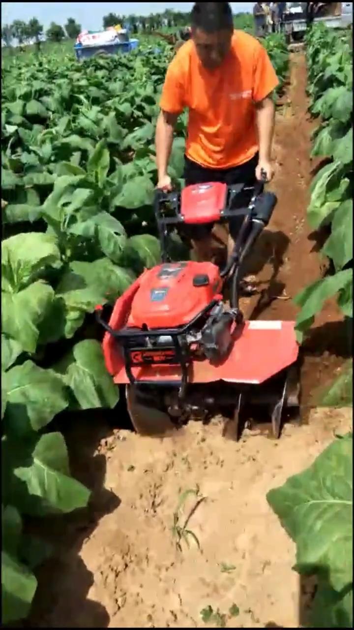 Trator pequeno rotary perfilhos jardim cultivador harrow leme poder preço da máquina na índia