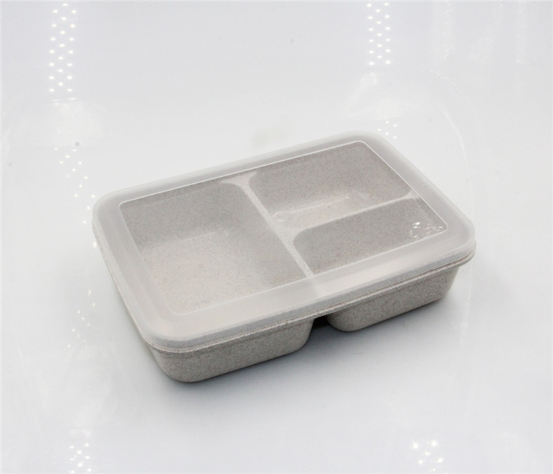 Groothandel BPA Gratis Plastic 3-Compartiment Container Bento Lunchbox luchtdichte container set