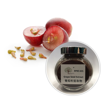 Hautpflege anti-falten GRAPE SEED EXTRACT