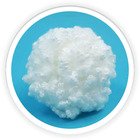 hollow siliconized polyester staple fiber manufacture