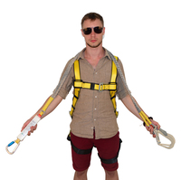 Adjustable fall protection safety belt full body safety harness CE standard with 2 hooks double lanyard