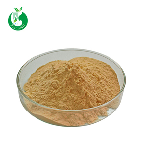 Wholesale Water Soluble Pure Chlorogenic Acid