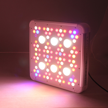 2019 Shenzhen new model Dual Chip Real 300w 600w 900w 1200w led grow light full spectrum led plant light for indoor growing