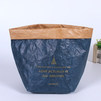 Homemade Paper Bag For Garden Plant Washable Kraft Paper Storage Dupont Tyvek Bag With Handle