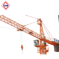 Hot Sale QTZ63(TC5610) Stain Steel Q345B Chip Mast Section Tower Crane With Low Price