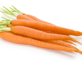 Premium fresh carrot with pesticide residual safe