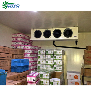 frozen pangasius fish cold storage facilities large cold room for beer  qingdao refrigeration cold room