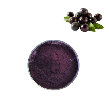 Acai Berry Powder Freeze Dried with High Quality
