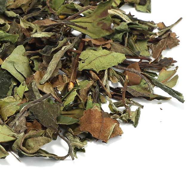 Factory Price private label organic white tea white peony loose tea - 4uTea | 4uTea.com