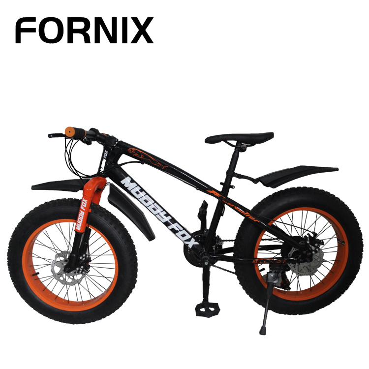 "China OEM bicycle bulk 20""*4.0 Tire 7 Speed variable fat bike Steel Frame beach bike for men Disc brake fat bike snow bicycle"