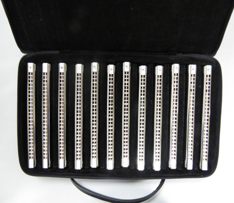 T2406S EASTTOP 24 gat professionele 12 key set tremolo harmonica in canvas doos