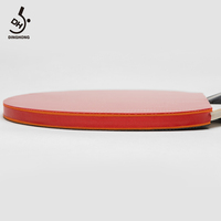 Ping Pong Paddle - 2 Pack Pro Premium Table Tennis Racket Set with 3 Balls for Professional Recreational Game