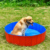Cool Summer Funny Pet Bath pool Foldable Large Inflatable Dog padding Swimming Pool