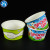 16oz disposable frozen yogurt paper cup ice cream cup packaging