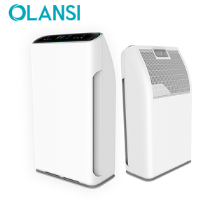 Poland India Germany model PM2.5 Air Purifier WIFI APP control Air cleaner HEPA filter