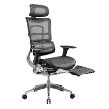 Ergohuman <span class=keywords><strong>chaise</strong></span> avec repose-pieds <span class=keywords><strong>chaise</strong></span> <span class=keywords><strong>de</strong></span> <span class=keywords><strong>bureau</strong></span> en maille