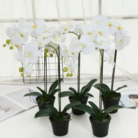orchid flowers for sale artificial orchid plants for home decoration