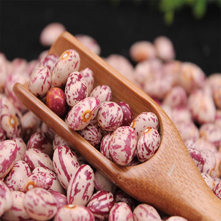 Sugar beans Hot sale newest crop speckled kidney beans Light speckled kidney beans with cheap price
