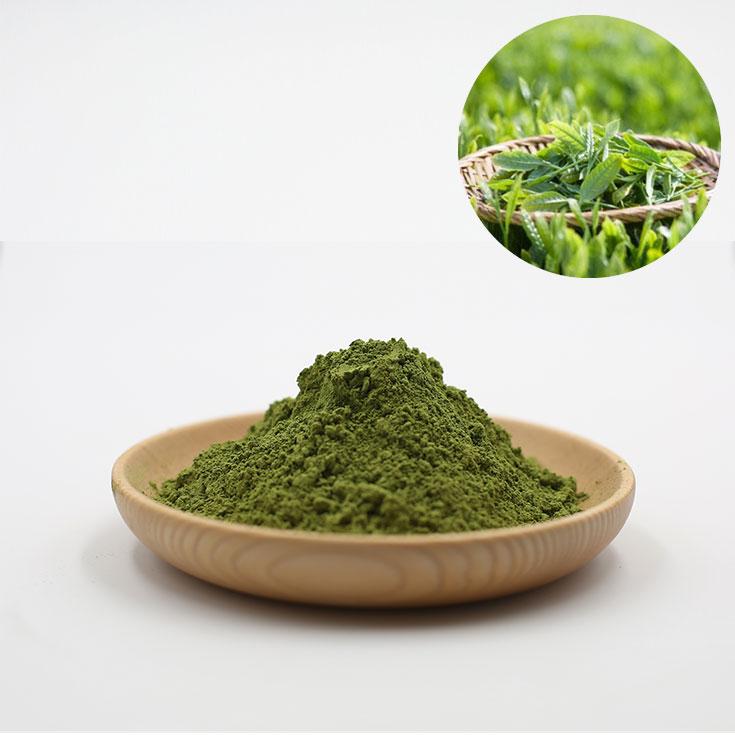 Bulk Supply Green Tea Organic Matcha - 4uTea | 4uTea.com