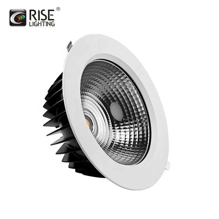 Rise Manufacture High Power 200mm cutting waterproof 40w COB led <strong>downlight</strong>