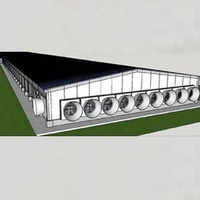 Fully automated chicken farm broiler for egg chickens