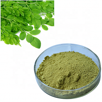 whole sale bulk price moringa leaf powder for wight loss