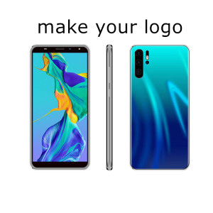 OEM make your logo 5.99 inch 18:9 WCDMA Quad core p20 unlocked smartphone in dubai for all people