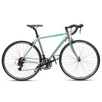 Aluminum Racing Road Bikes made in china