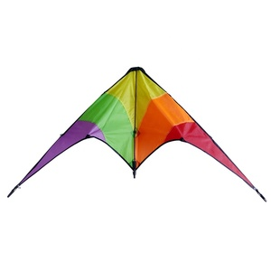 Dual Line Professional Delta Stunt Kite From the Kite Factory
