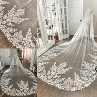 Cathedral Long Lace Wedding Bridal Veil