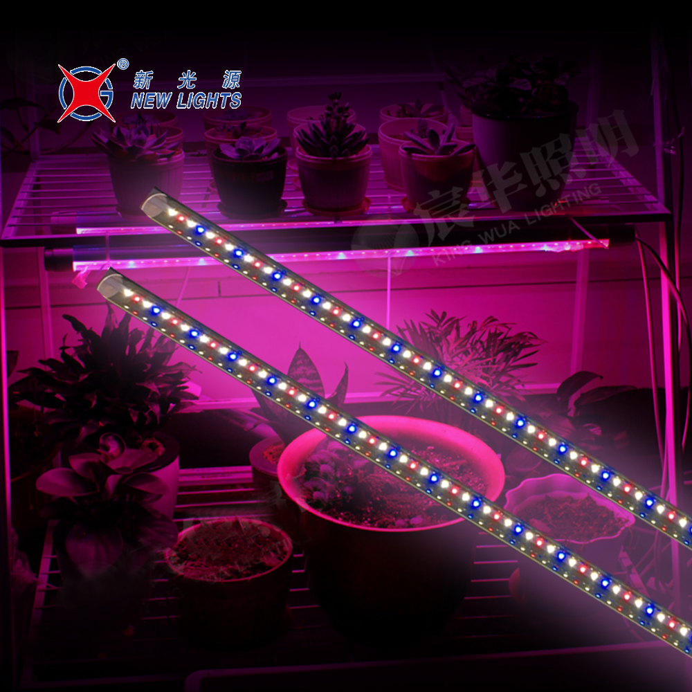 New Product Full Spectrum Indoor Plants T8 T5 Led Grow Light Buy Led Grow Light Grow Light Led Led Grow Light Indoor Plants Product On Alibaba Com