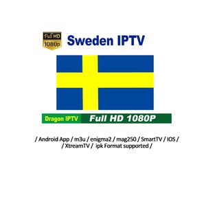 Sweden IPTV 12 Months Subscription 7400+ Live 5000+ VOD USA iptv Arabic  India African Europe List for IPTV Reseller Panel
