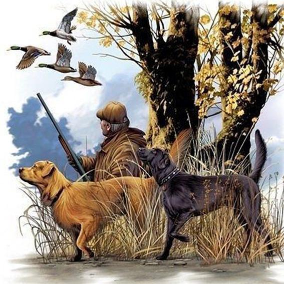 картинка с началом охоты воспитатель должен стать