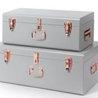Contemporary Designed Clear Storage Steel Metal Trunk with gold accessories