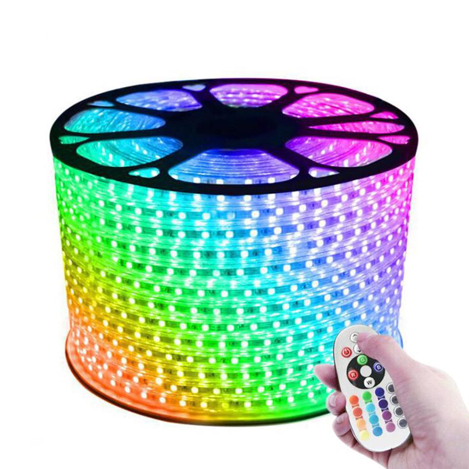 220V input ultra bright 96led/m 5050 flexible IP65 waterproof LED strip light