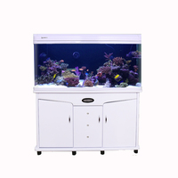 Minjiang professional aquarium curved glass fish tank with cabinet