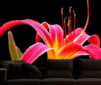 Download 600+ Wallpaper Bunga Untuk Ruang Tamu HD Paling Keren