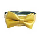 Skinny Women Pretty Gold PU Bowknot Belt For Dress